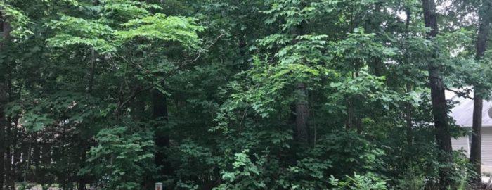 406 westover waterfront lot for sale in locust grove va 22508