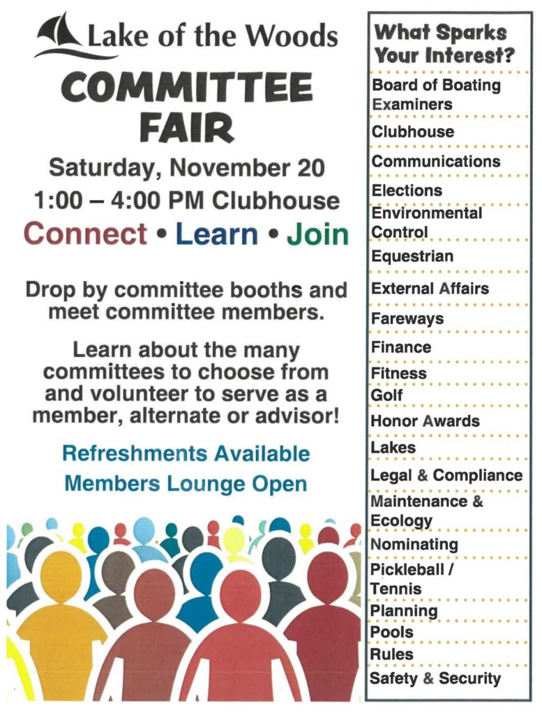 Lake of the Woods committee fair opportunity